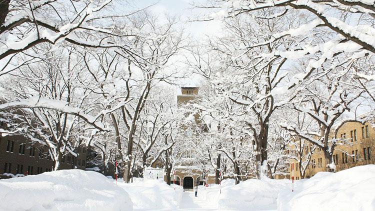 北海道大学缩略图