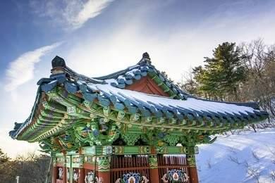 韩国高中留学优势和条件插图