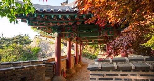 釜山国立大学留学一年费用缩略图