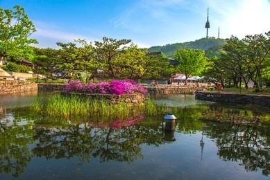 2021年韩国留学一年15万够吗缩略图